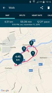 Fitbit App: overzicht route